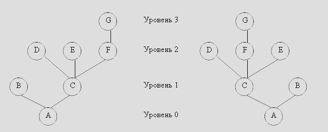 Пример дерева